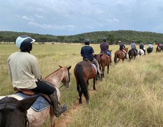 Dinokeng horseback safari